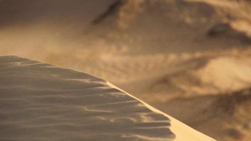 grano de arena desierto